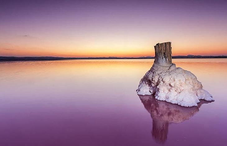 Las Lagunas de la Mata y Torrevieja